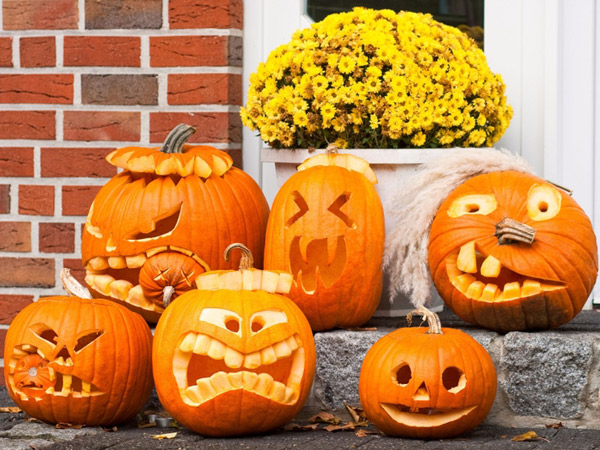 Sering Jadi Hiasan Saat Halloween, Labu Kuning Ternyata Punya Banyak Manfaat
