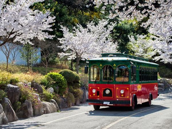 Serunya Keliling Kota Seoul Dengan Bus Kota Bergaya Klasik Ini