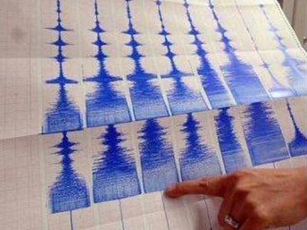 Gempa 7.3 SR di Sangihe Sempat Buat BMKG Keluarkan Peringatan Tsunami?