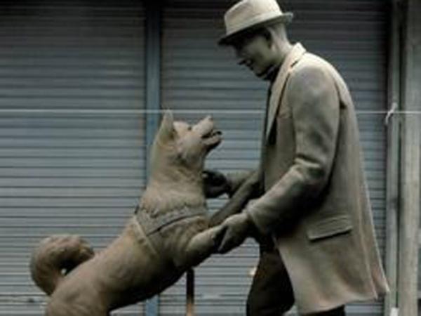 Hachiko Si Anjing Setia Akhirnya Bertemu dengan Majikannya
