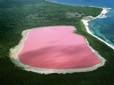 Australia Punya Danau Milkshake Strawberry?