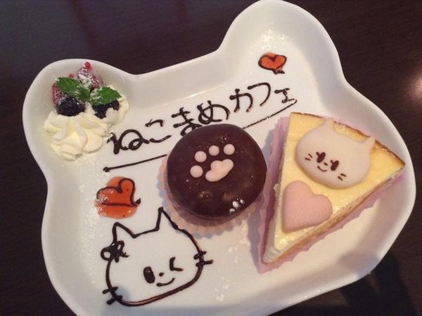 Kafe di Jepang Ini Jual Berbagai Kue dengan Bentuk Wajah Kucing yang Imut