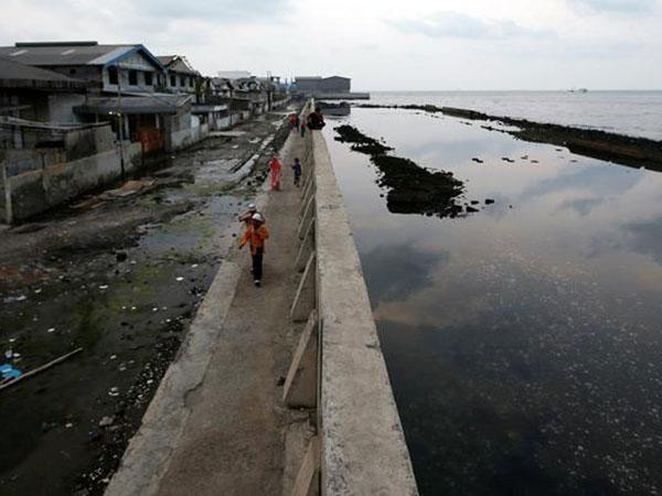 Seberapa Bahaya Cemaran Paracetamol di Laut Jakarta?