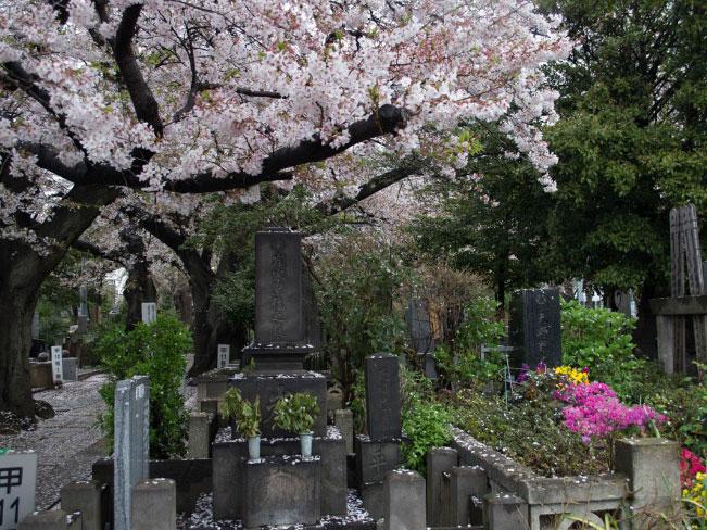 Sambangi Tempat-tempat Tersembunyi di Tokyo yang Misterius Namun Memikat Hati Travelers