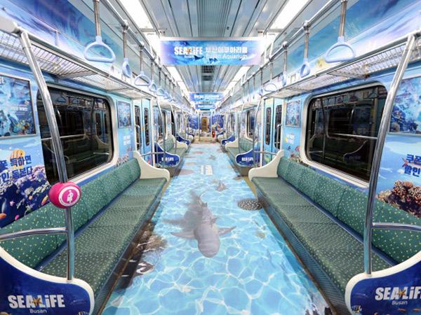 Rasakan Sensasi Naik 'Kereta Bawah Laut' Murah Meriah di Busan