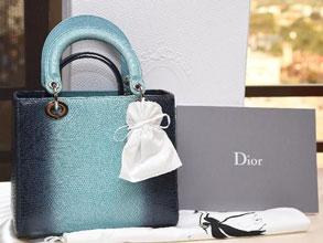 Ternyata Lady Diana Adalah Sosok Inspirasi Dibalik Tas Ikonik Dior Ini!