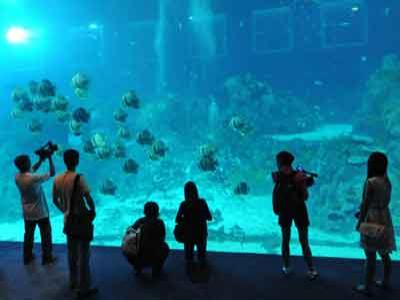 Singapura Kini Miliki Akuarium Air Tawar Terbesar di Dunia