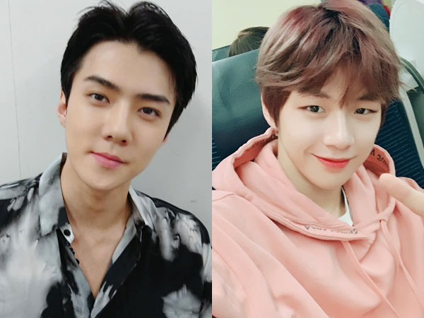 Khusus Temui Sehun EXO, Kang Daniel Bakal Muncul di tvN 'Coffee Friends'