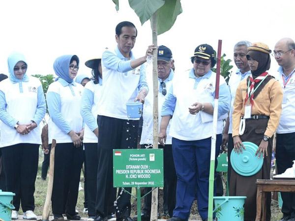 Bangga! Indonesia Berhasil Pecahkan Rekor Dunia Penanaman 237 Pohon Selama 1 Jam