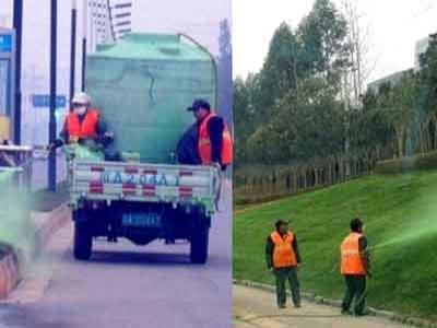 Duh, Agar Terlihat Hijau, Pemerintah China Ngecat Rumput