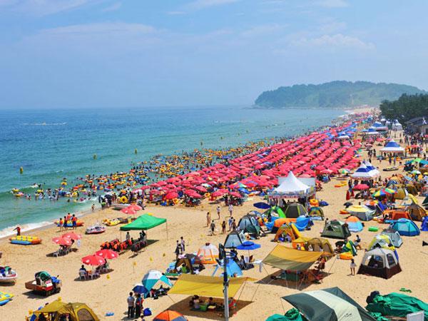 Sejumlah Lokasi Pantai Cantik Korea Selatan yang Siap Jadi Favorit Liburan Musim Panas! (Part 1)