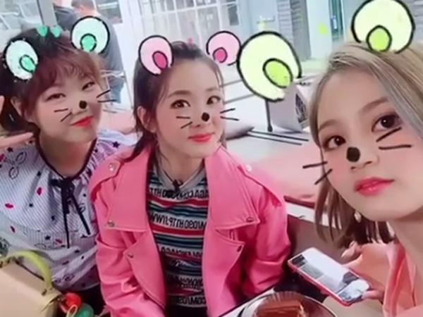 Yeay, Tiga Gadis Cantik YG Entertainment Ini Bakal Punya Variety Show Bareng!