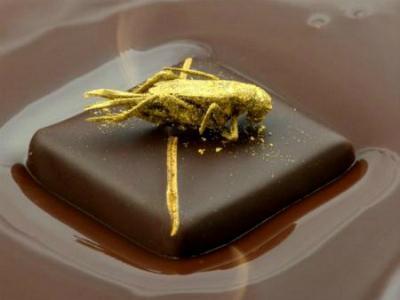 Cokelat Ini Disajikan Dengan Hiasan Belalang Lapis Emas!
