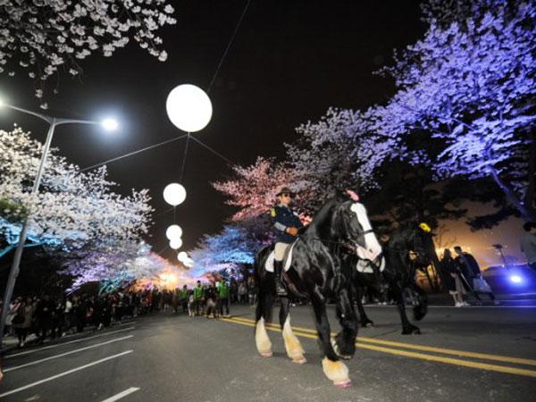 Uniknya Festival Korea Malam Hari Penuh Bunga, 'Let's Run Park Seoul'!