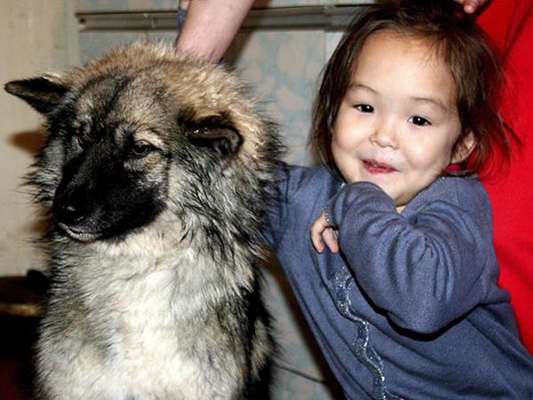 Tersesat di Hutan Selama 12 Hari, Bocah 5 Tahun Selamat dengan Sang Anjing