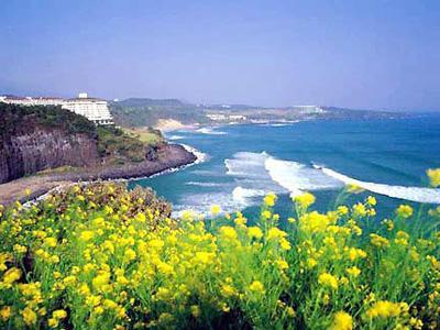 Inilah 5 Lokasi Wisata Menarik di Jeju Island Korea Selatan