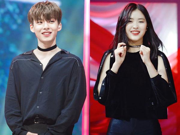 Jin Young dan Ryu Jin Masih Unggul, Berikut Peringkat Top 9 Terbaru 'MIXNINE'