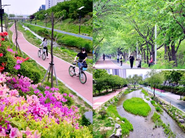 Menelusuri Sudut Baru Songpa Trail di Seoul, Hutan Mini di Tengah Kota