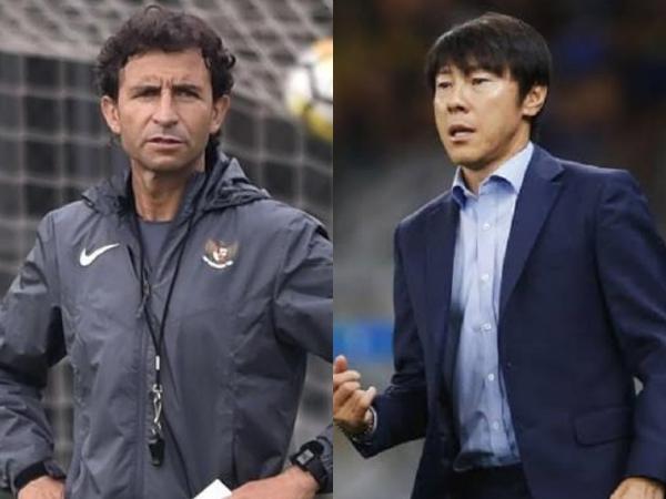 Timnas Bimbang Pilih Calon Pelatih Baru, Pelatih Lokal Sarankan Luis Milla atau Shin Tae-yong?