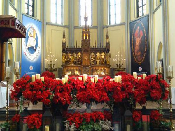 Seribu Pot Tanaman Hidup Hiasi Natal di Katedral Jakarta