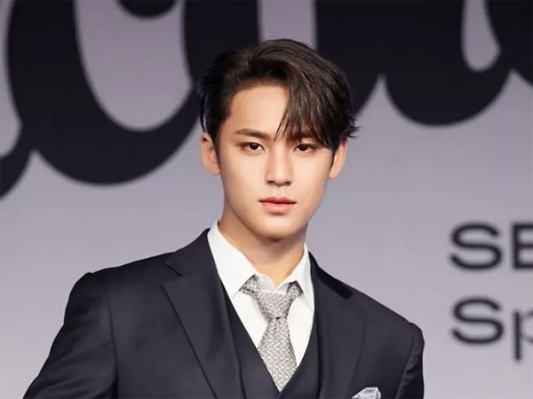 Pledis Berikan Update Kelanjutan Penyelidikan Rumor Mingyu SEVENTEEN