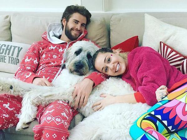 Makin Serius, Miley Cyrus Berencana Pindah ke Australia Bersama Liam Hemsworth Bulan Depan?