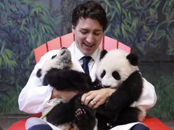 Foto Imut PM Kanada Tampan Peluk Panda Ini Hebohkan Dunia Maya