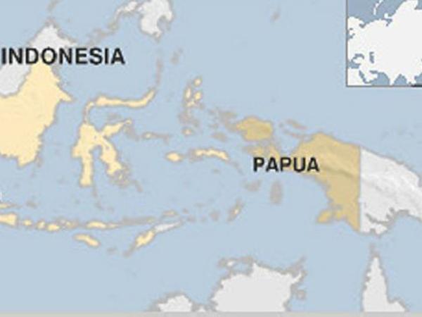 Gempa 7,2 SR Guncang Tengah Hutan Papua Timbulkan Kepanikan Warga