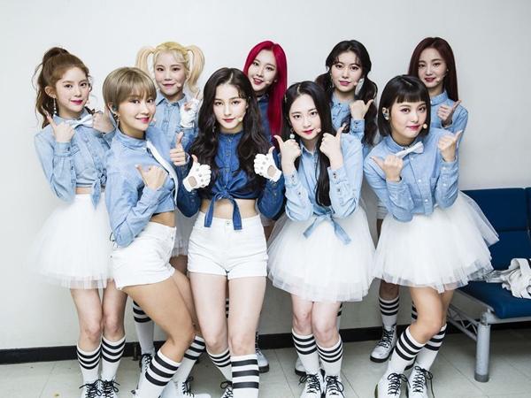 Pemerintah Korea Akhirnya Rilis Pernyataan Soal Tuduhan Sajaegi yang Dilakukan Girl Group MOMOLAND