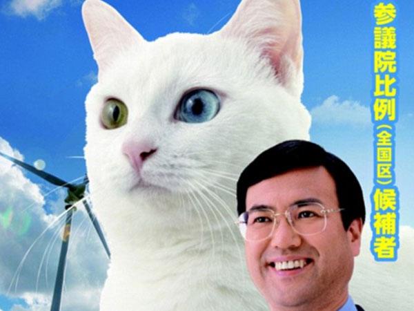 Gemas, Politisi Ini Gunakan Poster Kucing untuk Menangkan Kampanye Politik