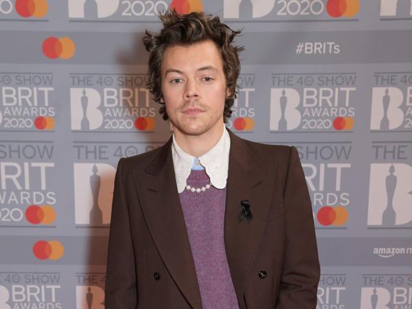 Harry Styles Diincar Bintangi Film My Policeman
