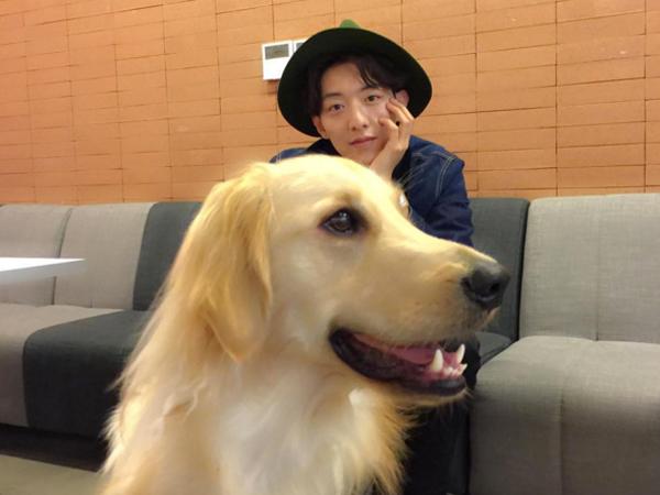 Tips Adopsi Hewan Terlantar Dari Jungshin CNBLUE