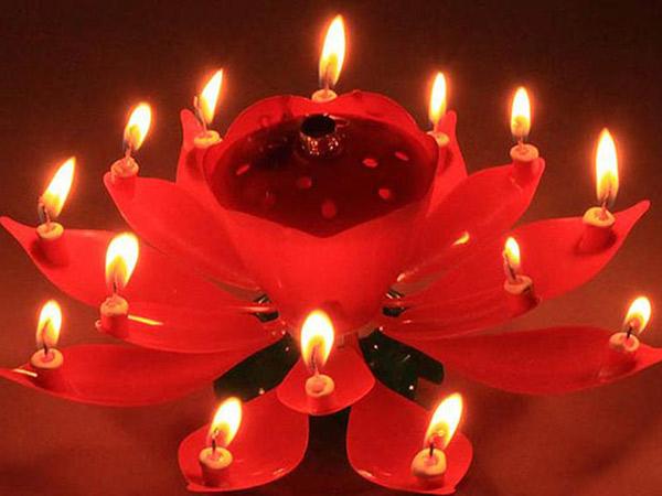 Cantik dan Uniknya Kue Ulang Tahun Berbentuk Bunga Lotus yang Tengah Jadi Tren