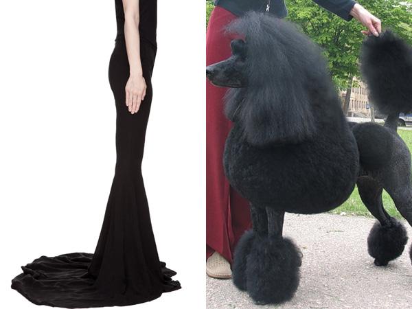 Uniknya, Celana Ini Berbentuk Seperti Kaki Anjing Poodle!