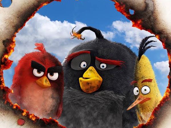 Kisah Pejuangan Burung yang Dikucilkan Dalam Menyelamatkan Pulaunya di 'The Angry Birds Movie'