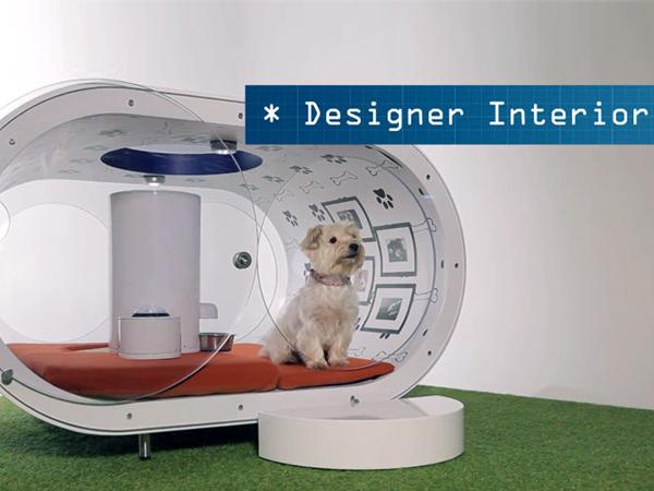 Keren, Samsung Buat Rumah Impian untuk Anjing!