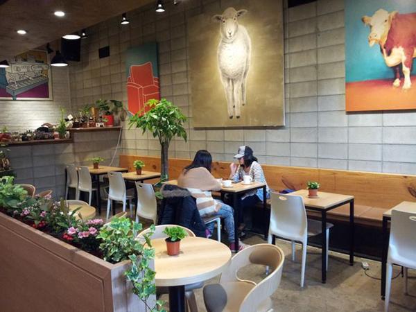 Intip Uniknya Kafe Domba di Hongdae, Korea Selatan Ini