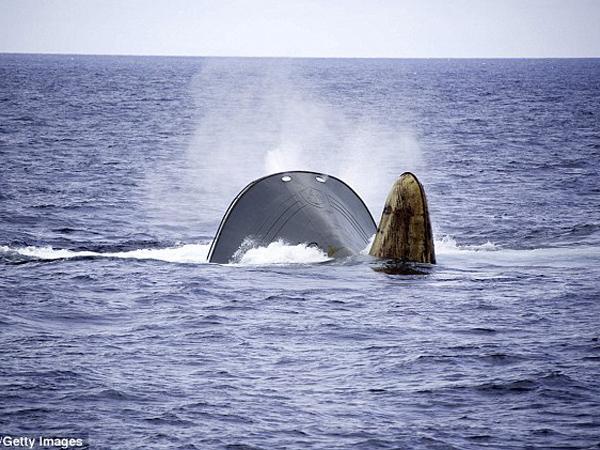 12 WNI Terdampar Akibat Tenggelamnya Kapal Ikan Korea Selatan