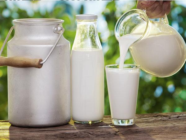 Walaupun Sehat, Ternyata Susu Kurang Baik Dicampurkan Dalam Makanan. Apa Alasannya?