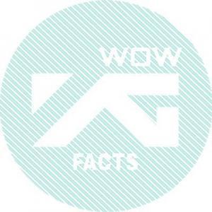 WOWFakta_YG